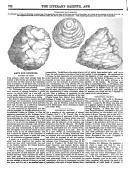 Página 762