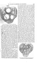 Página 409
